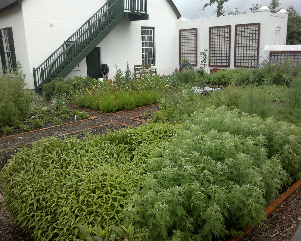 Hambisela_Horticultural_Service_ARW---Manor-House---Herb-garden