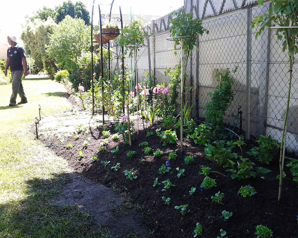 Hambisela_Horticultural_Service_House-Herholdt---Somerhaven-Retirement-Village---Somerset-West06