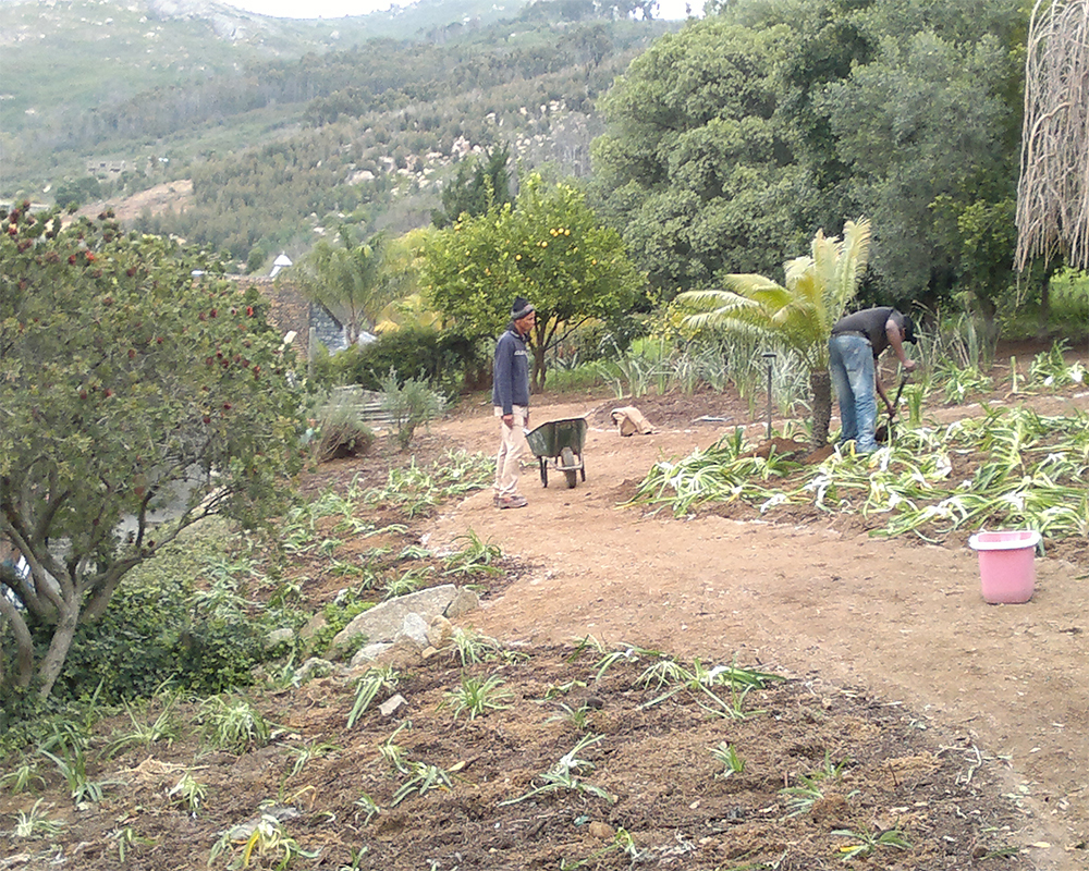 Hambisela_Horticultural_Service_House-Pauw---Design-and-landscape-garden