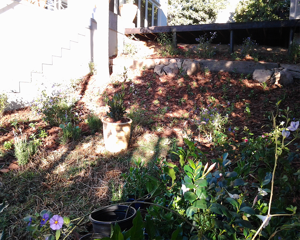 Hambisela_Horticultural_Service_House-Serfontein---Paarl01