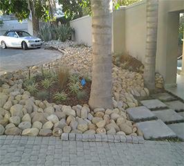 Hambisela_Horticultural_Service_Portfolio_F