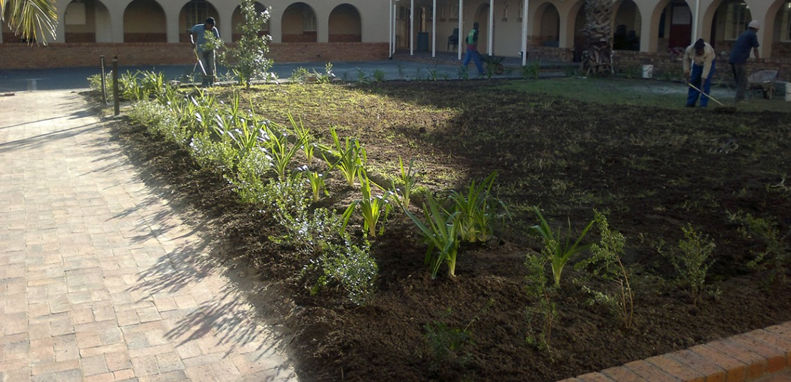 Hambisela_Horticultural_Service_Gallary_0011