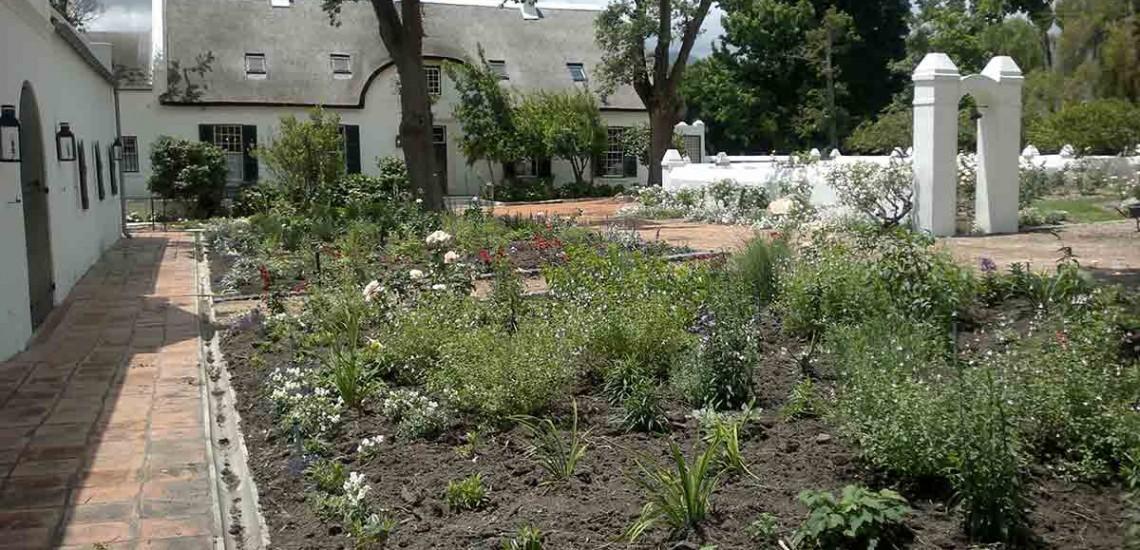 Hambisela_Horticultural_Service_Gallary_002