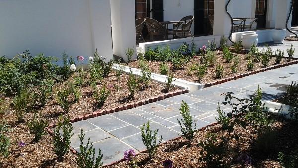 Hambisela_Horticultural_Service_Gallary_003